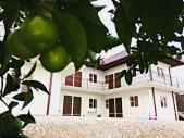 Гостевой дом «Целебный источник», Абхазия, г. Новый Афон, п. Приморское
