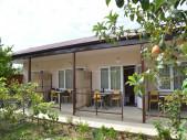 Частная гостиница ″Инжир″ пос. Алахадзе, Абхазия